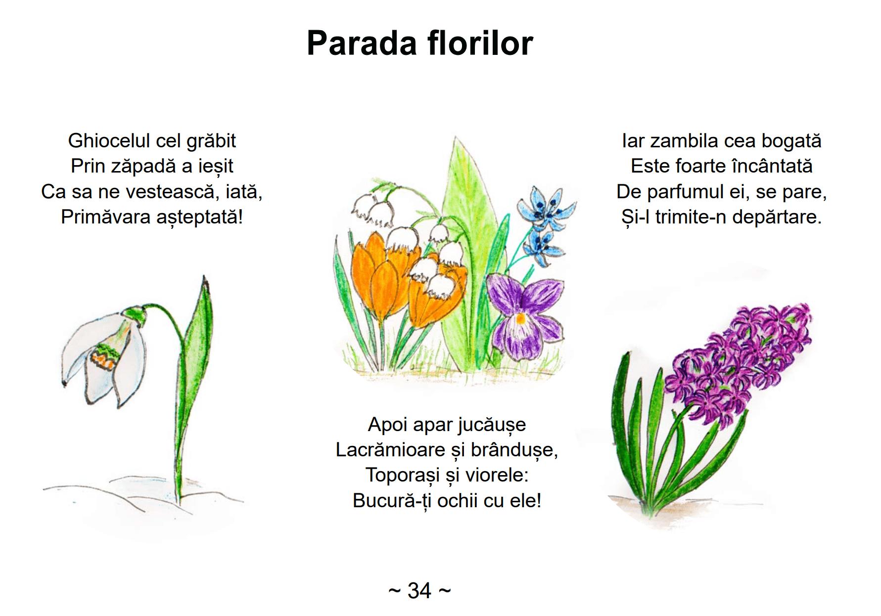 Cu-pasi-mici-parada-florilor.png
